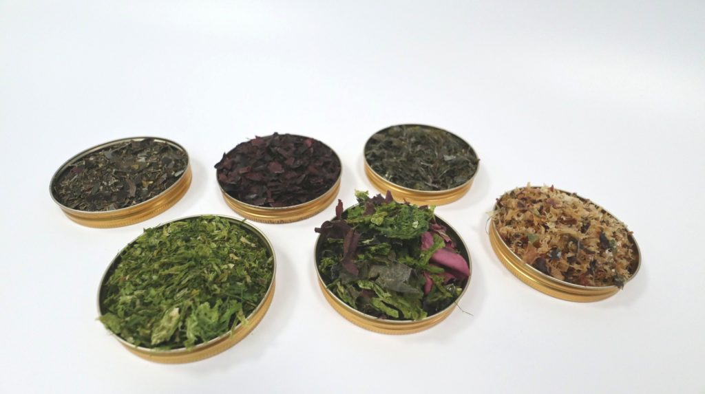 minerals in seaweed